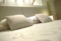 hotel-vicino-san-raffaele-milano